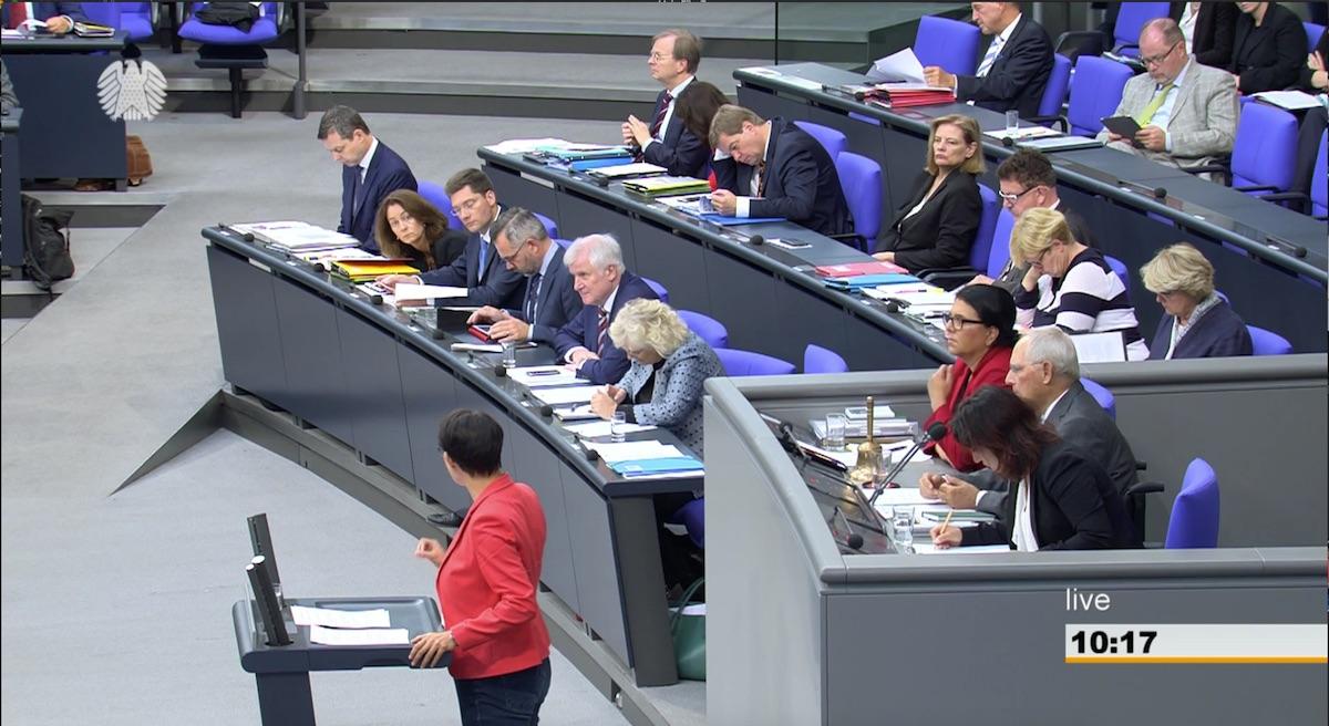 Irene Mihalic im Bundestag